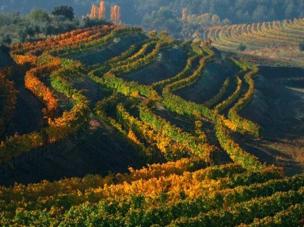 De Priorat wijnregio, pareltje ten zuiden van Barcelona