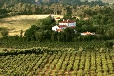 Verblijf op landgoed bij Obidos