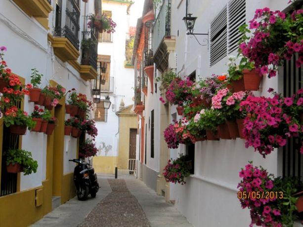 Calle de Flores, Córdoba