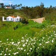 Het landgoed in de lente