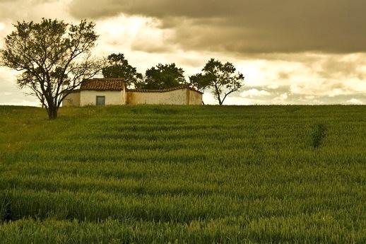 De wijdse landschappen van Castilla y León