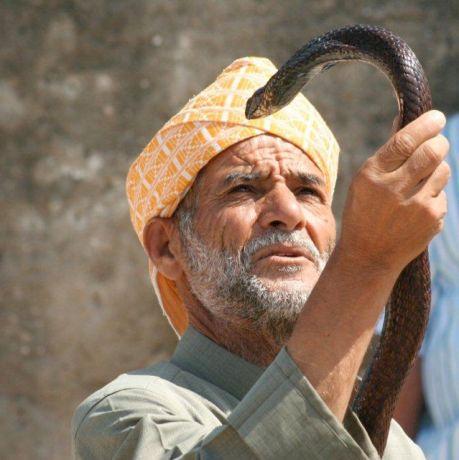 dagexcursie naat Marokko