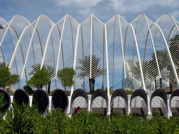 L\'Umbracle Ciudad de les Artes y las Ciencias, Santiago Calatrava